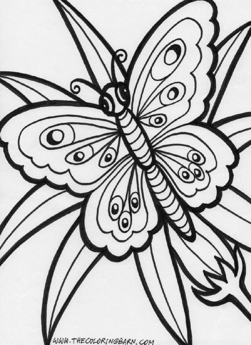 Free Printable Coloring Sheets Stress Relief  Coloring Pages Printable Peacocks Stress Relief Coloring Pages