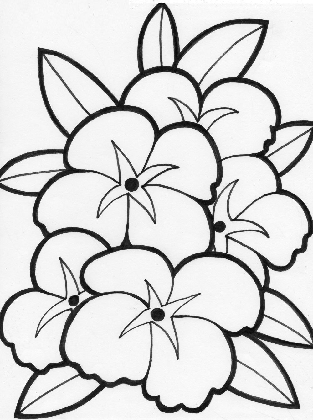 Free Printable Summer Coloring Pages  summer flowers printable coloring pages Free