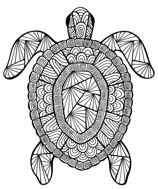 Free Printable Summer Coloring Pages  12 Free Printable Adult Coloring Pages for Summer
