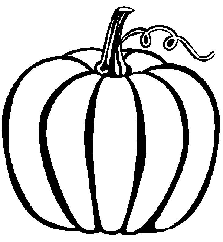 Free Pumpkin Coloring Pages  Pumpkin Outline Printable Clipartion