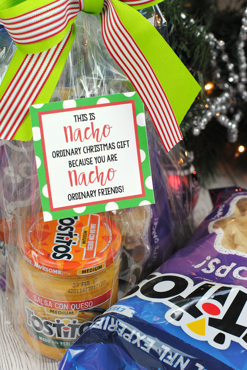 Fun Holiday Gift Ideas  Funny Christmas Gift Idea with Pringles – Fun Squared