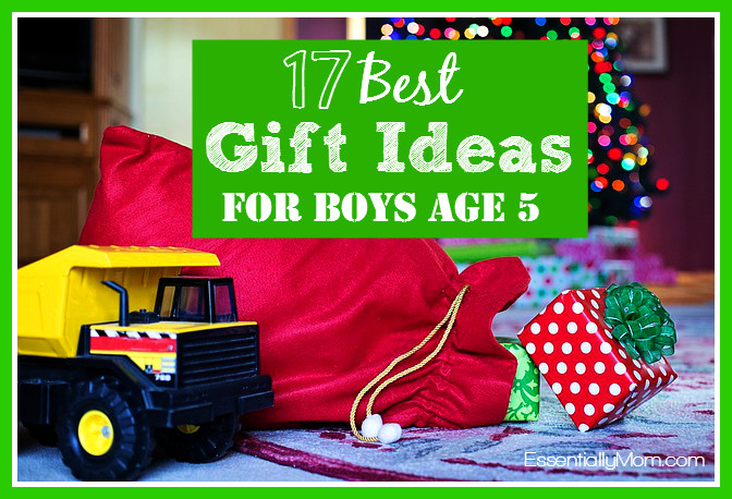 Best ideas about Gift Ideas For Boys Age 5 . Save or Pin Birthday Gift For Age Ideas Gift Ftempo Now.