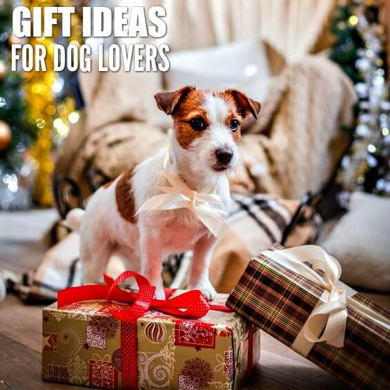 Gift Ideas For Dog Lovers  Gift Ideas for Dog Owners 25 Presents for Dog Lovers
