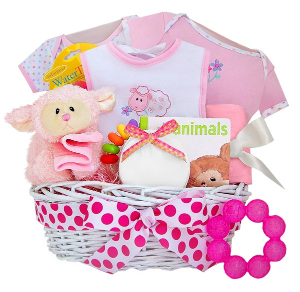 Girl Baby Shower Gift Basket Ideas  How To Make Baby Shower Gift Baskets