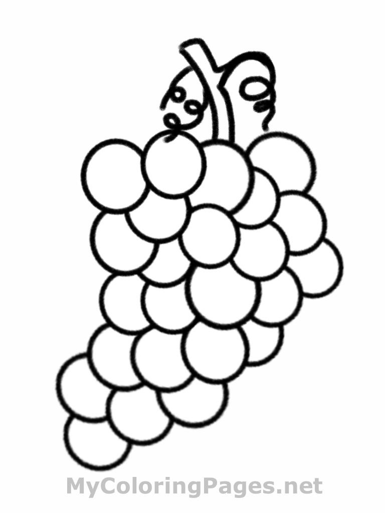 Grapes Coloring Pages  Grapes clipart coloring book Pencil and in color grapes