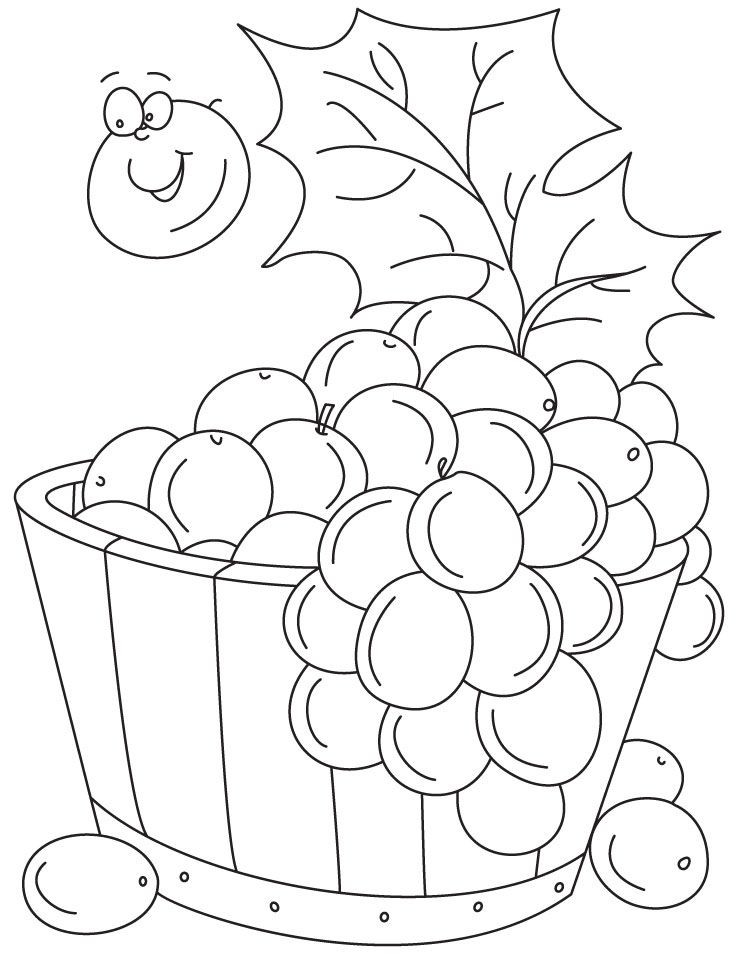 Grapes Coloring Pages  Pic Grapes Coloring Home