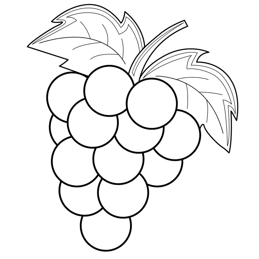 Grapes Coloring Pages  Grapes coloring pages to and print for free
