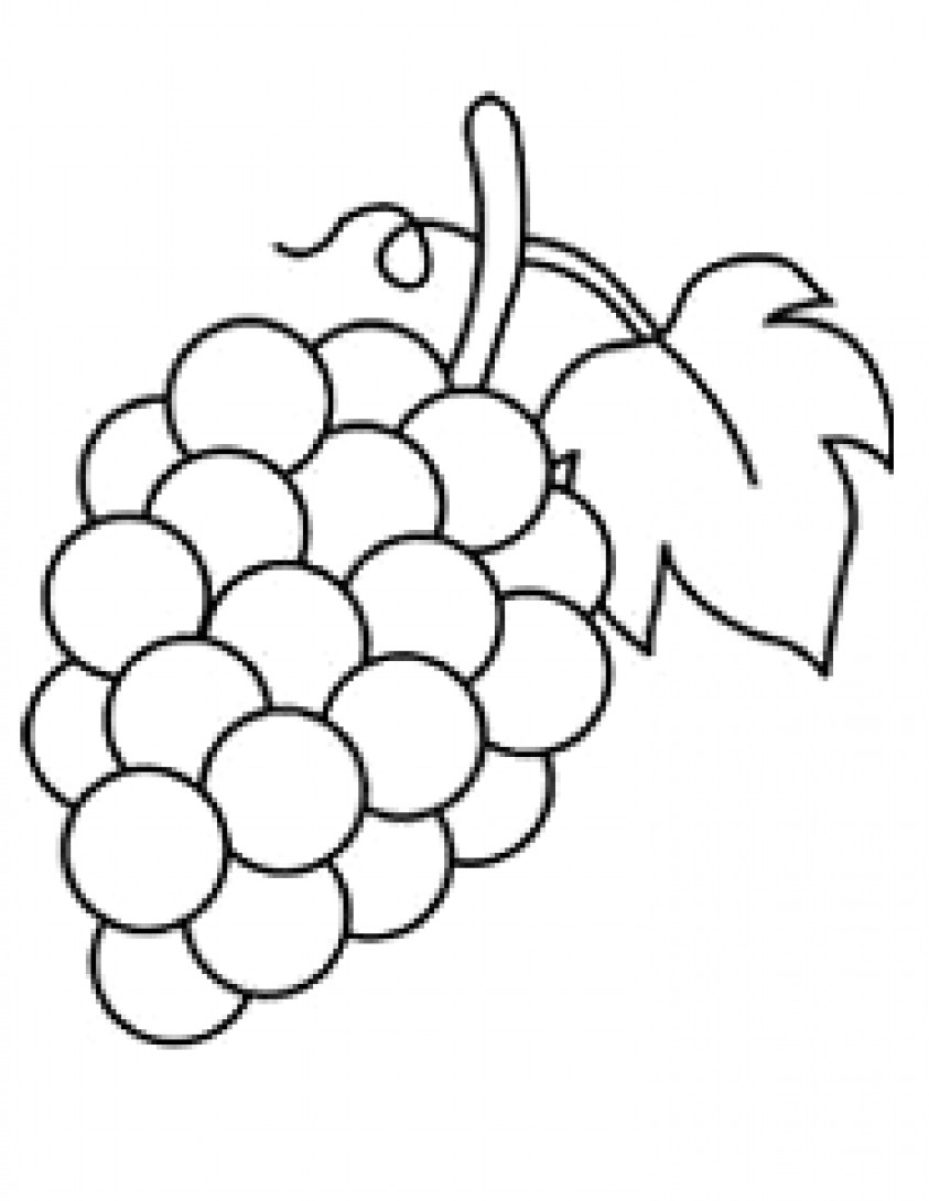 Grapes Coloring Pages  Fruits And Ve ables Grapes Coloring Page