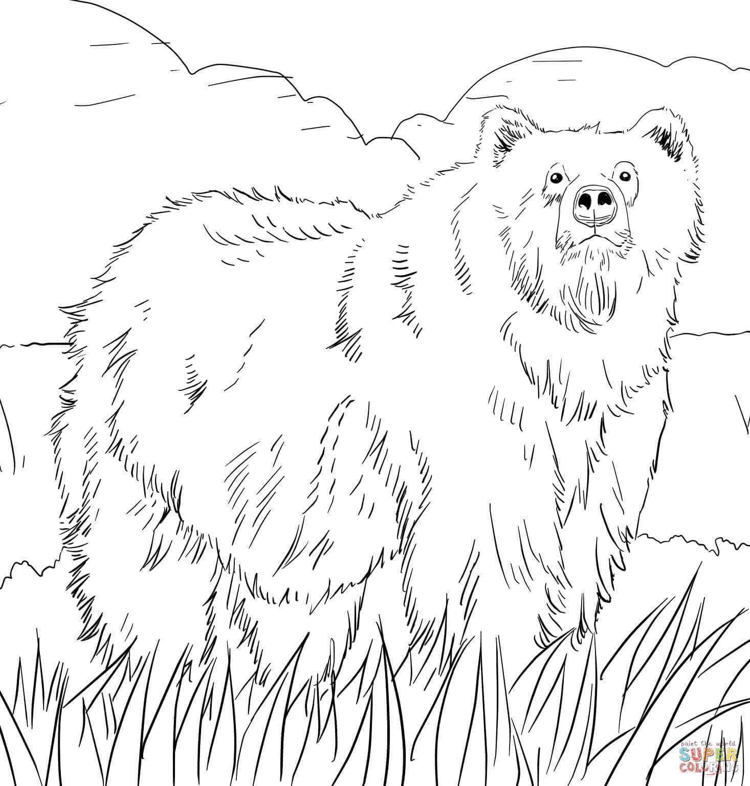 Grizzly Bear Coloring Pages For Kids  Alaskan Grizzly Bear coloring page