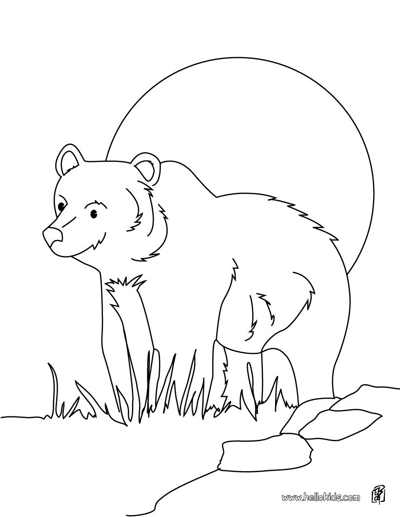 Grizzly Bear Coloring Pages For Kids  Grizzly bear coloring pages Hellokids