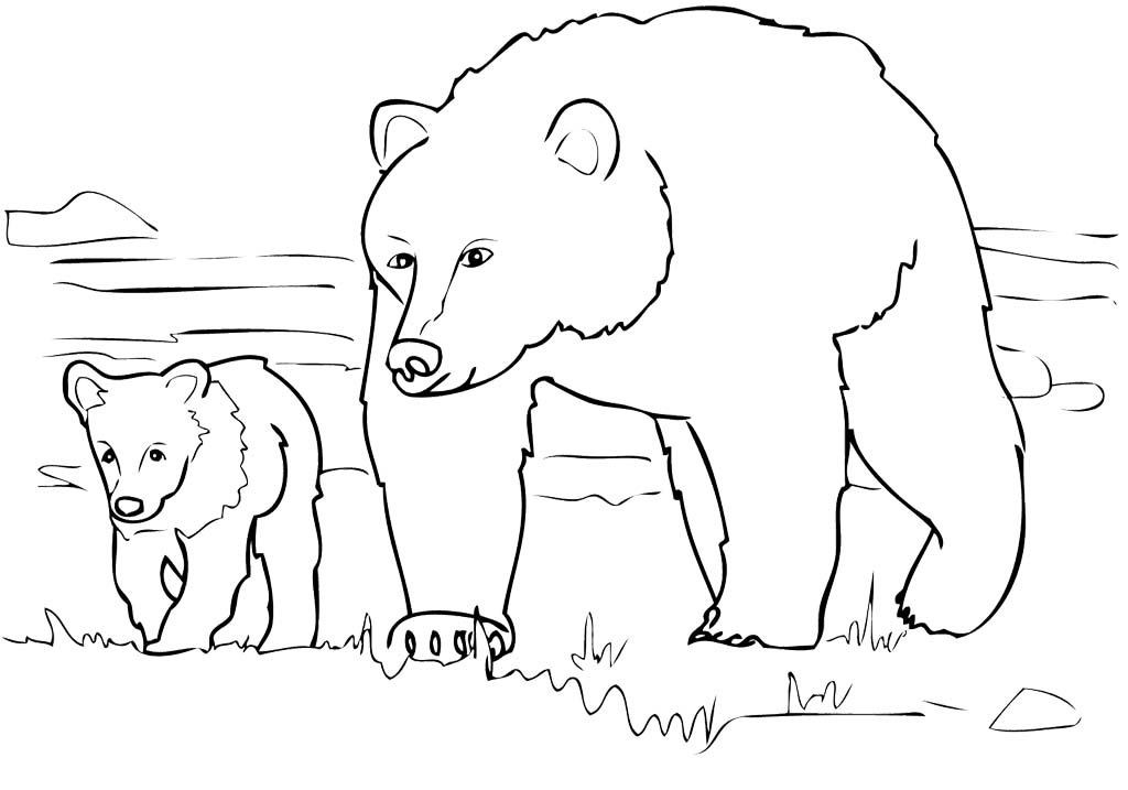 Grizzly Bear Coloring Pages For Kids  Grizzly Bear Family Coloring Pages