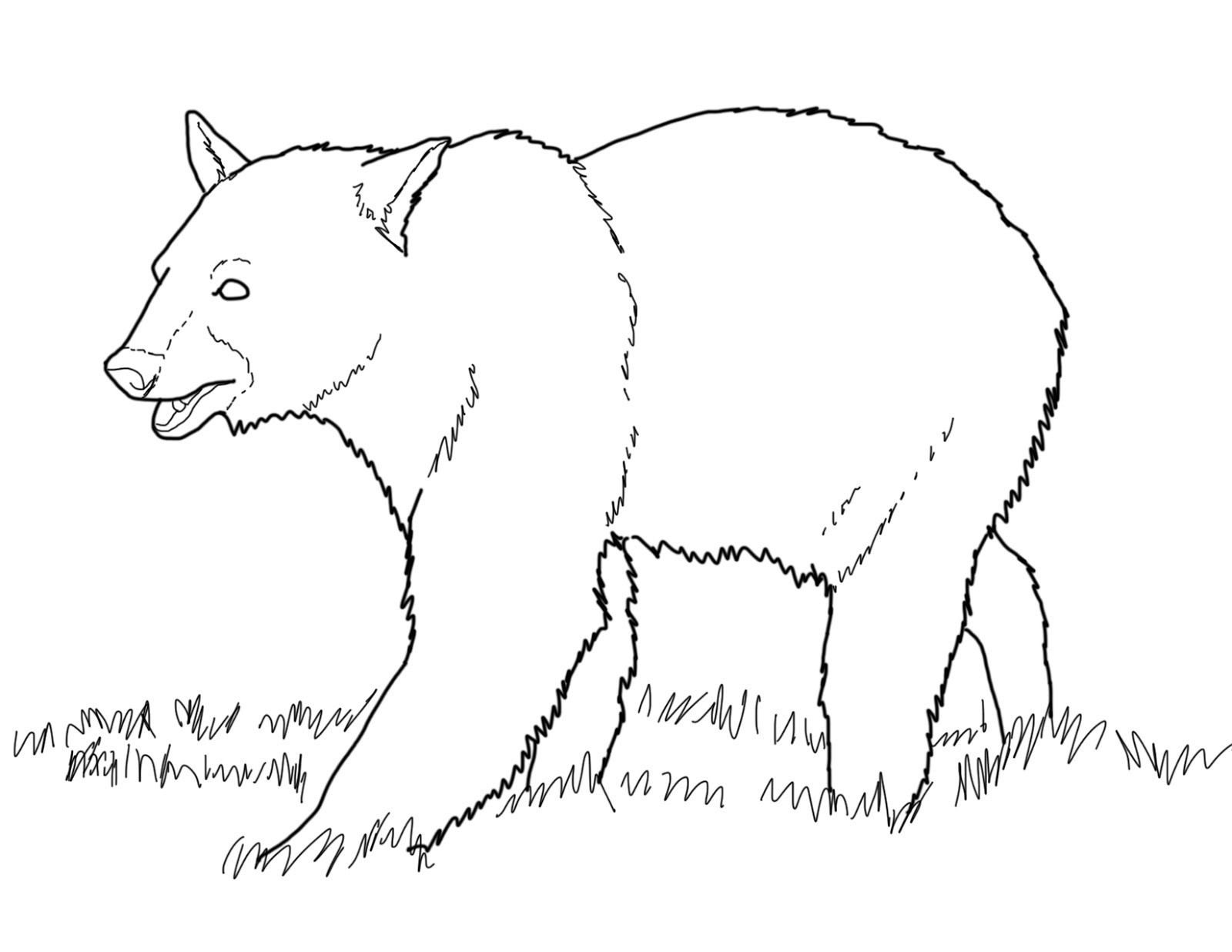 Grizzly Bear Coloring Pages For Kids  Grizzly Bear Coloring Pages Gallery