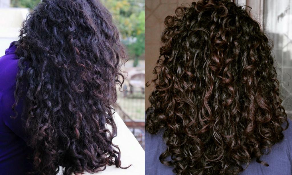 Hair Mask For Curly Hair DIY  The Curious Column Mrinalini s Top 5 DIY Hair Masks For