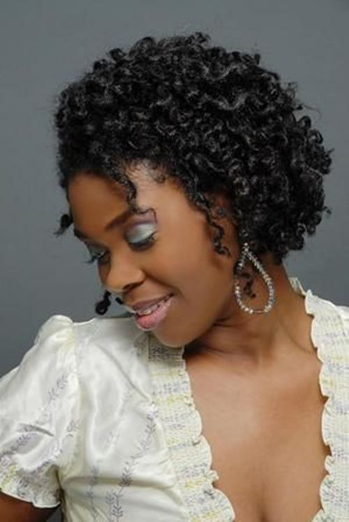 Hairstyles For Natural Curly Black Hair  Black Natural Hairstyles 20 Cute Natural Hairstyles For