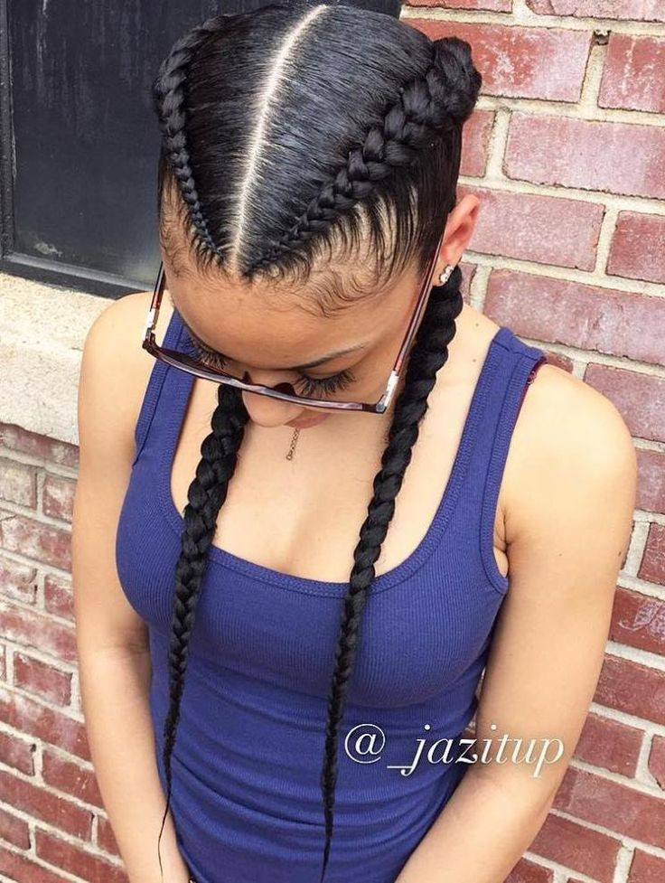 Hairstyles With Two Braids  2 Goddess Braids to the Side
