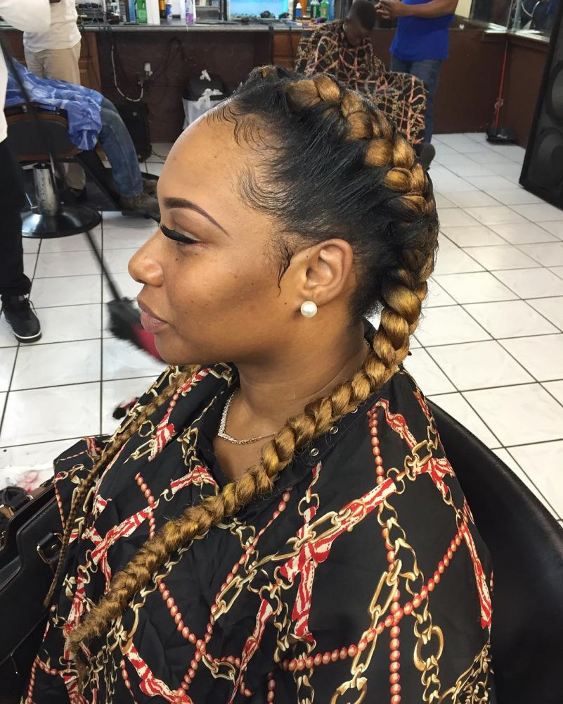 Hairstyles With Two Braids  Hairstyles With Two Braids