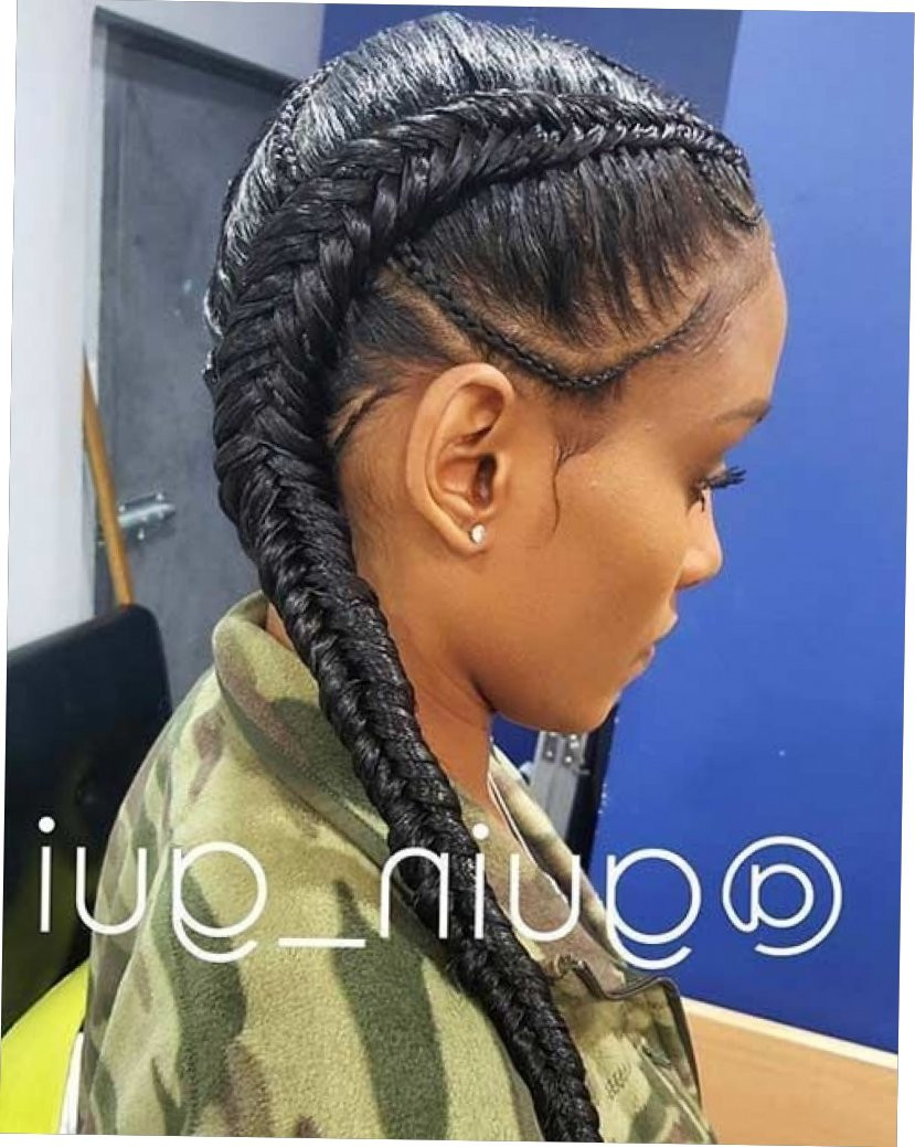 Hairstyles With Two Braids  2 Long Braids Hairstyles 2 Braids Hairstyle The Best Hair