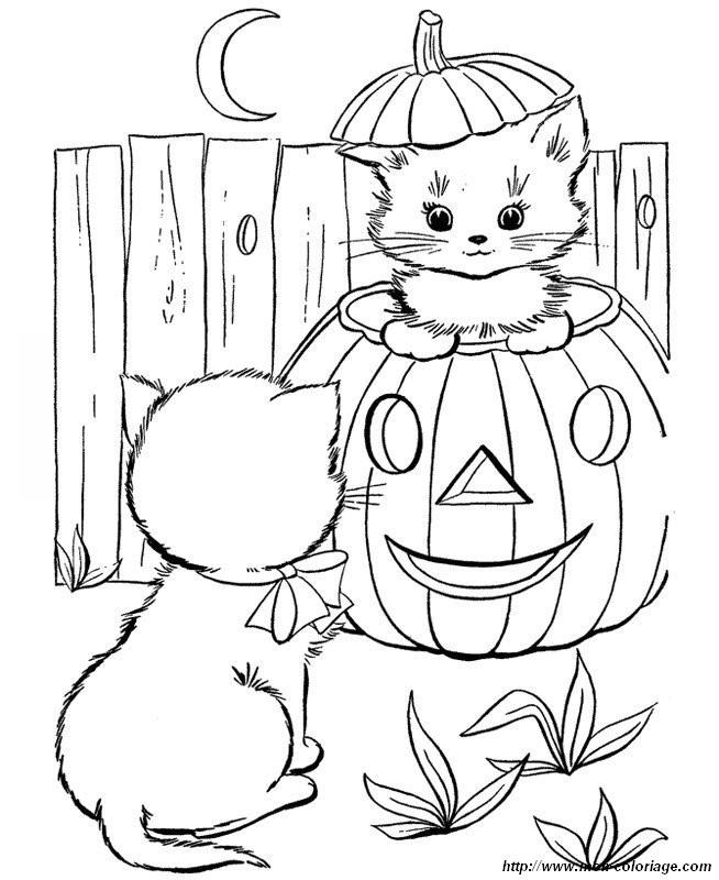 Halloween Coloring Pages For Girls 15 And Up  Coloriage de Chat dessin dans une citrouille pour