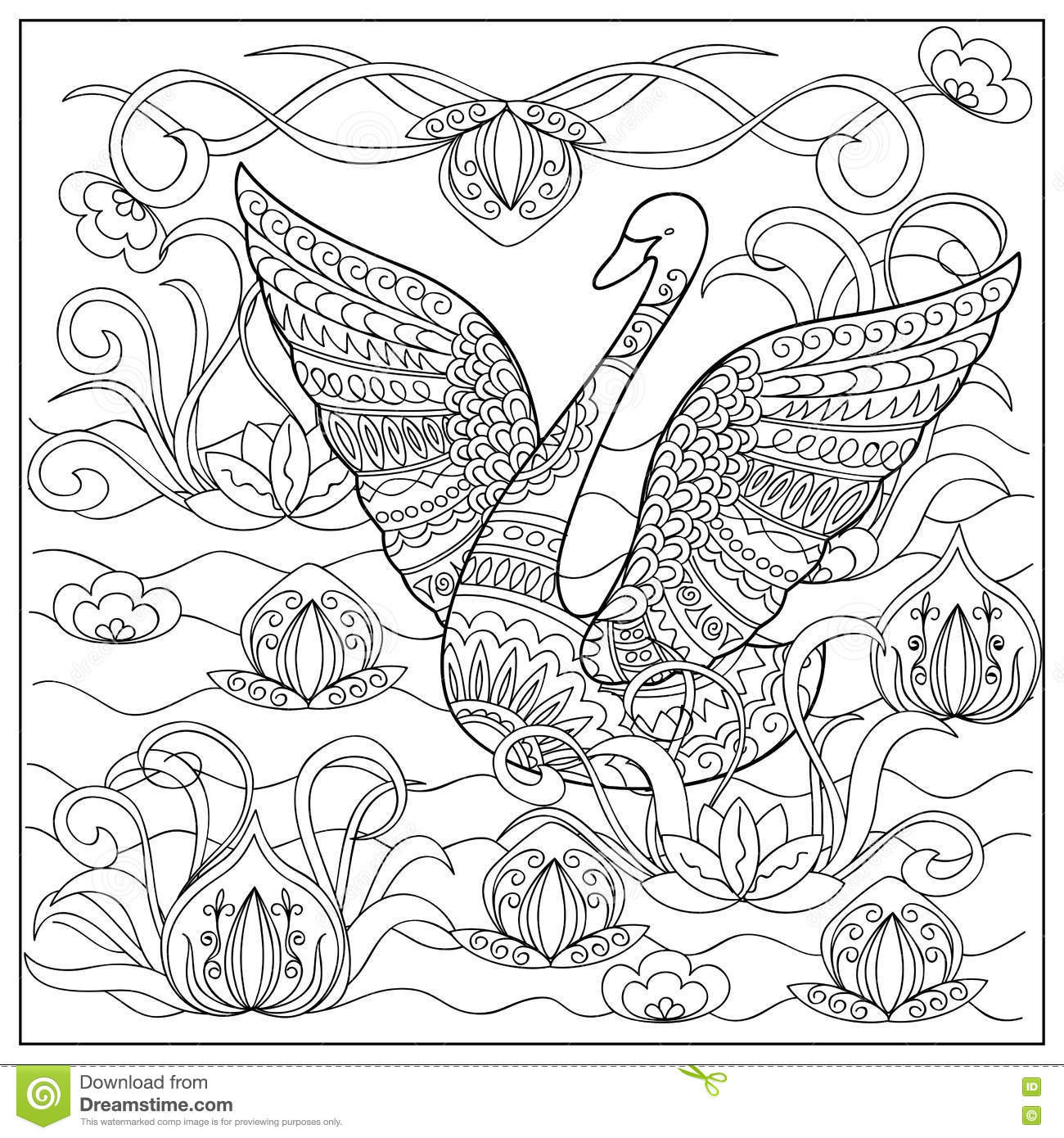 Hand Drawn Coloring Pages  Swan In The Lake Stock Vector Image