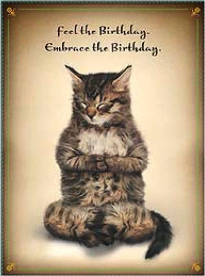 Happy Birthday Funny Cats  Cat Memes Happy Birthday Cat Memes Funny Cat Memes