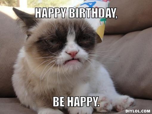Happy Birthday Funny Cats  Funny Happy Birthday Meme Cat Jpg Litle Pups