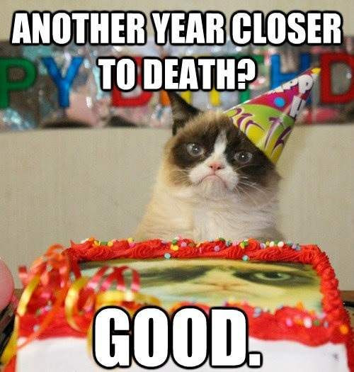 Happy Birthday Funny Cats  25 Happy Birthday Funny Quotes – Quotes Words Sayings