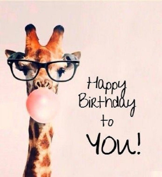 Best ideas about Happy Birthday Video Funny . Save or Pin Funny Happy Birthday Memes Pics Collection Now.