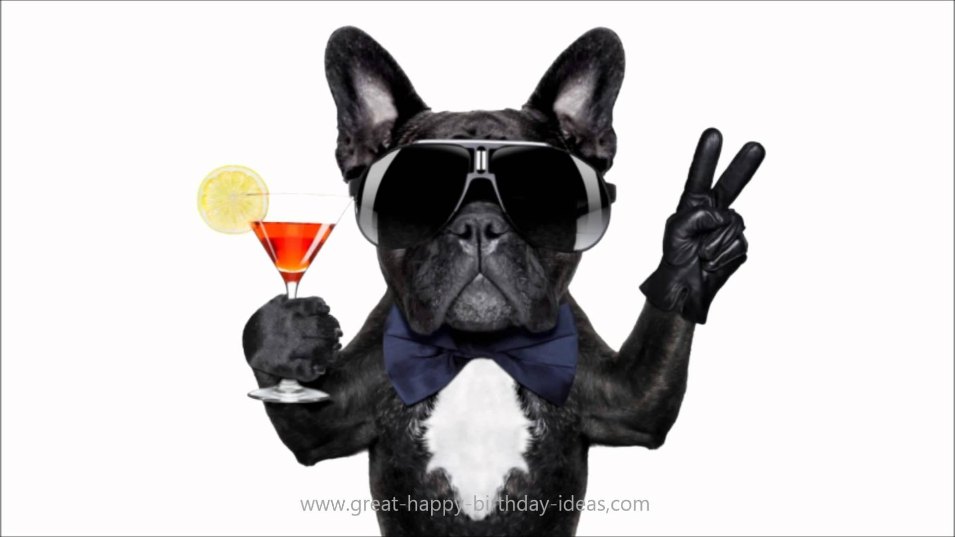 Best ideas about Happy Birthday Video Funny . Save or Pin alles Gute zum Geburtstag Bilder lustig HD Now.