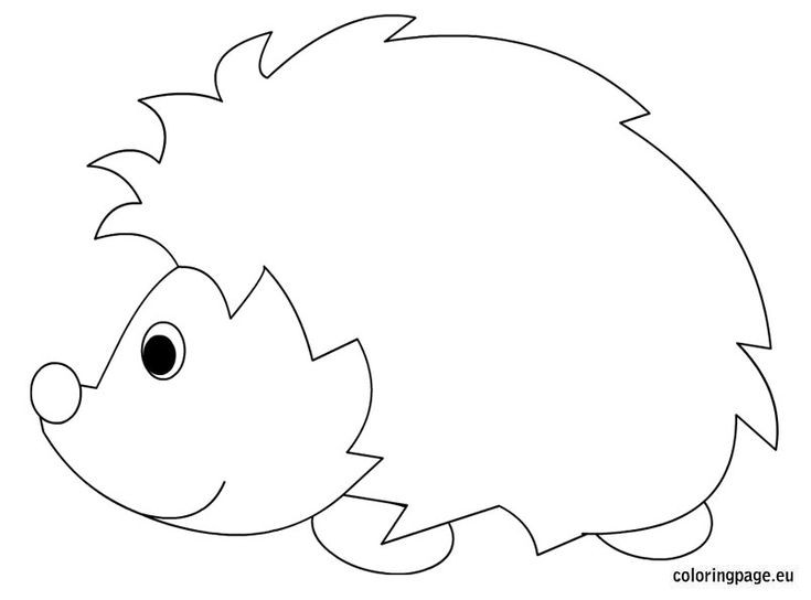 Hedgehog Coloring Pages  Hedgehog coloring sheet Printable Pinterest