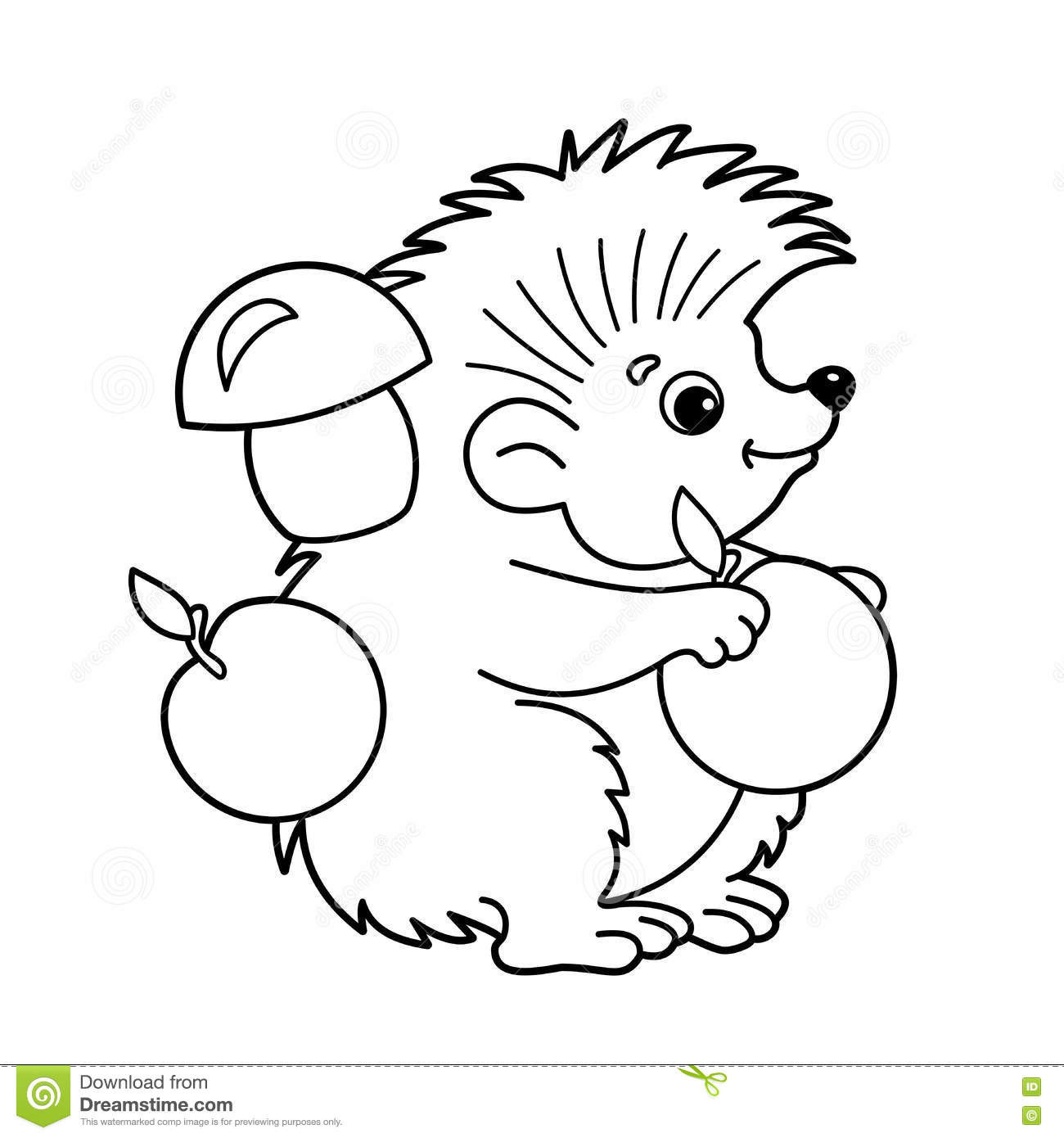 Hedgehog Coloring Pages  Hedgehog clipart coloring page Pencil and in color