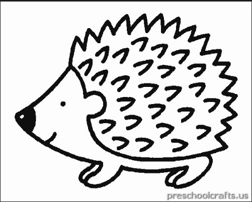 Hedgehog Coloring Pages  free printable hedgehog coloring page for child