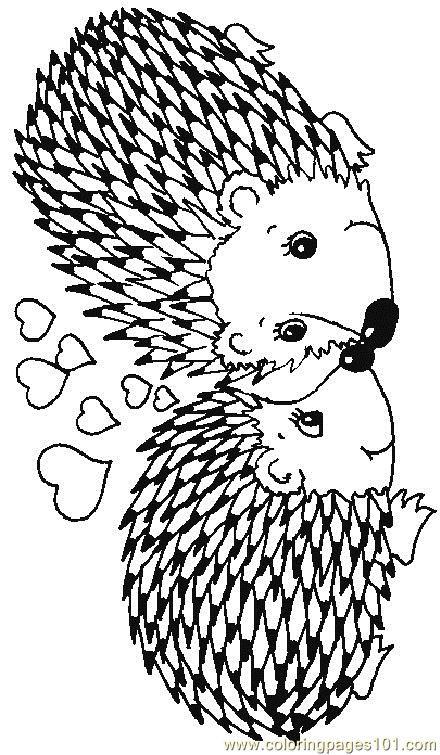 Hedgehog Coloring Pages  Hedgehog 17 Coloring Page Free Hedgehog Coloring Pages