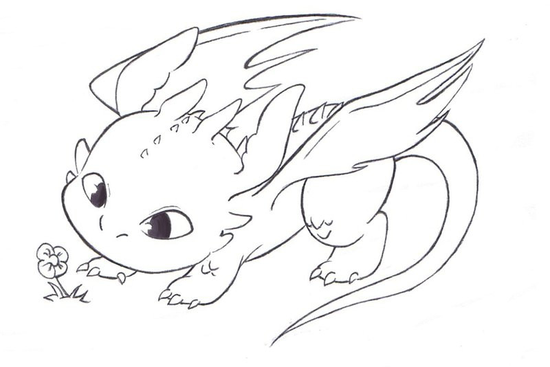 Best ideas about How To Train Your Dragon Coloring Sheets For Girls . Save or Pin how train your dragon by foxi14 on DeviantArt Now.