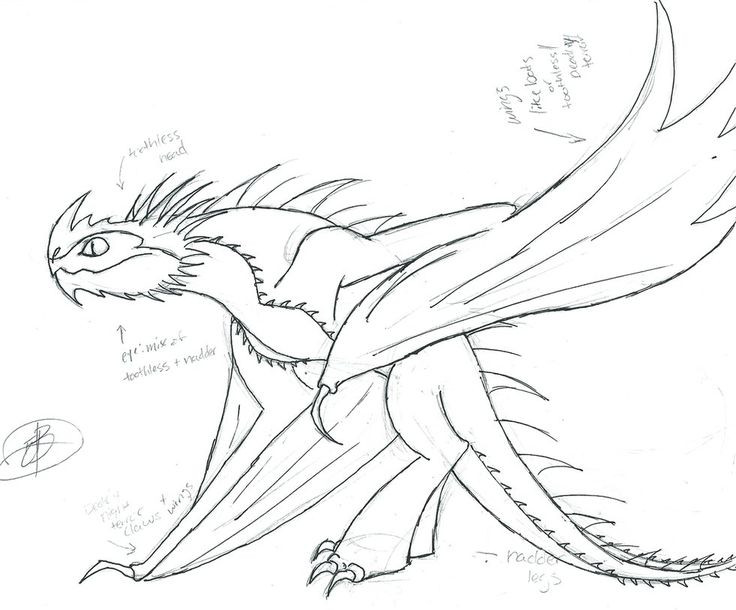 Best ideas about How To Train Your Dragon Coloring Sheets For Girls . Save or Pin 75 best images about how to train your dragon on Pinterest Now.