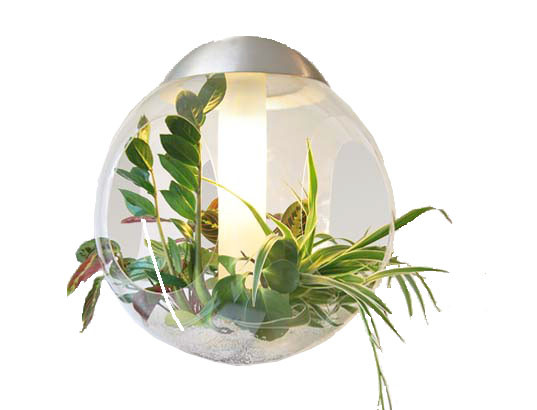 Best ideas about Indoor Plant Light . Save or Pin Indoor Plant Lights for Aeroponics Now.