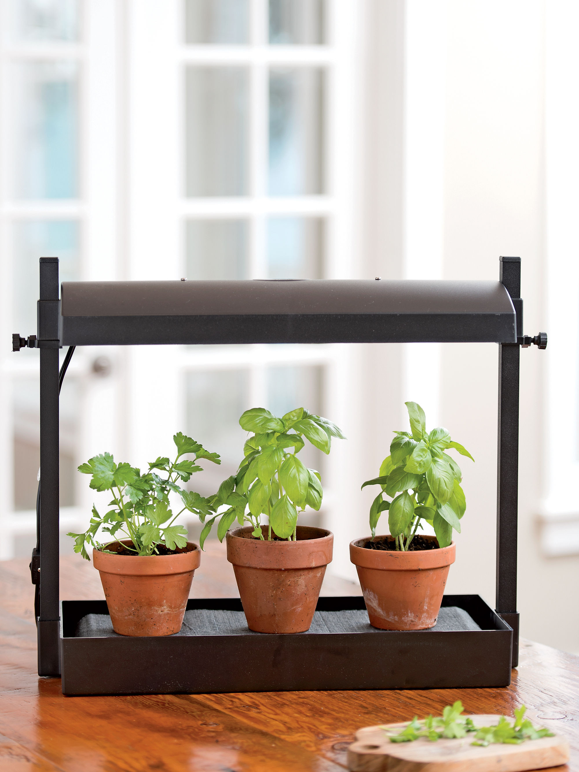 Best ideas about Indoor Plant Light . Save or Pin Tall Plant Stand Easy Up Indoor Tall Plant Stand Wooden Now.