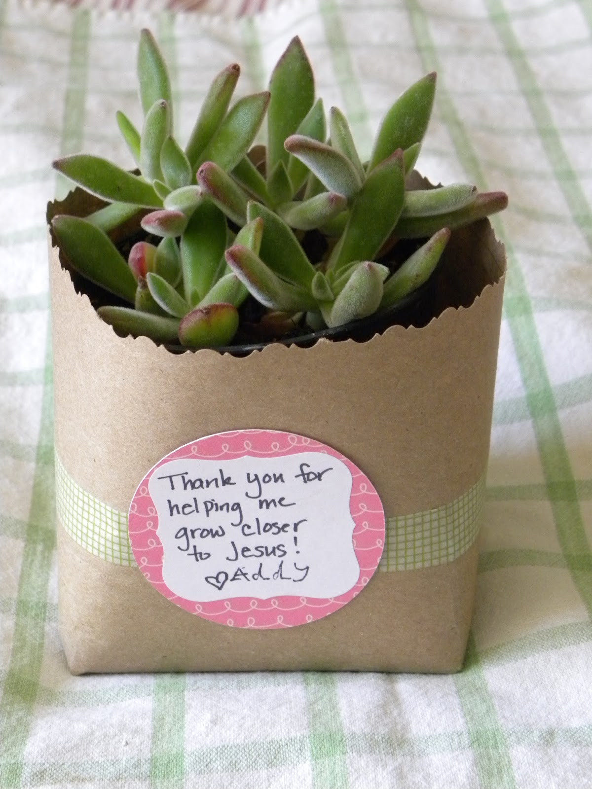 Inexpensive Thank You Gift Ideas  Blissful Blooms A Simple and inexpensive Thank You Gift