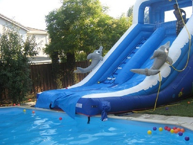 Best ideas about Inflatable Pool Slides For Inground Pools . Save or Pin Play Inflatable Water Slides For Kids Dolphin Inflatable Now.