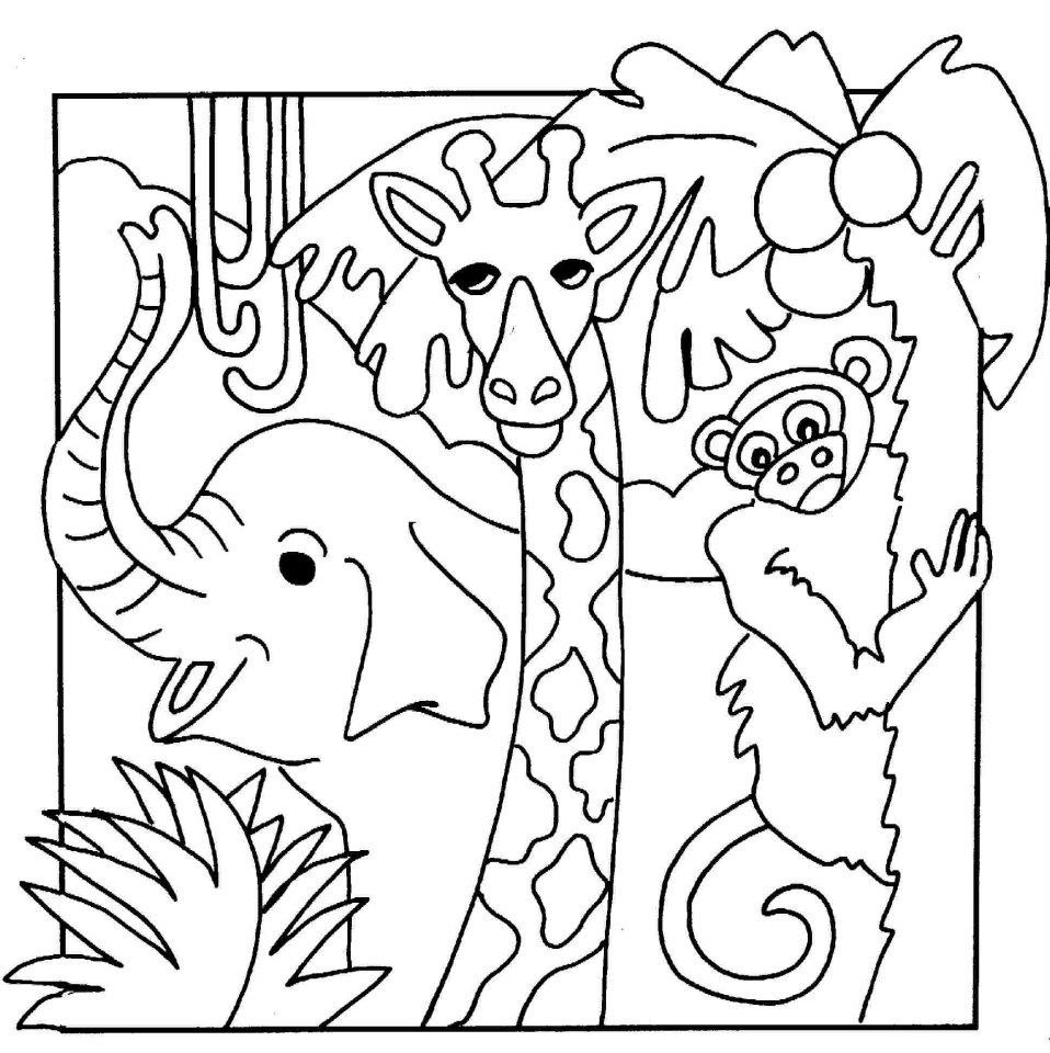 Jungle Coloring Pages  Animal Coloring Pages Bestofcoloring