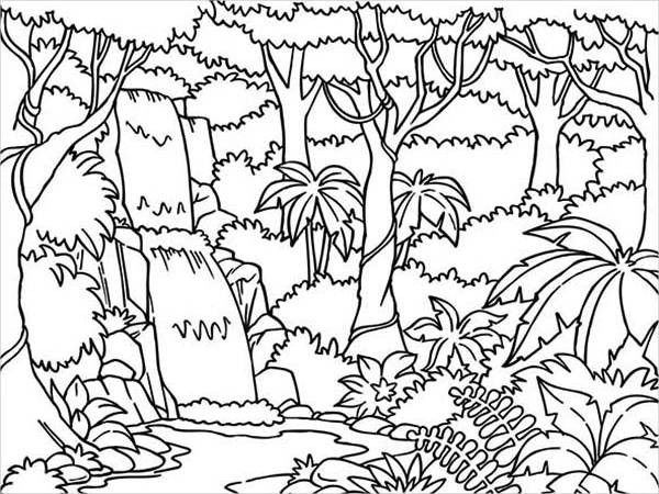 Jungle Coloring Pages  8 Jungle Coloring Pages PDF PNG