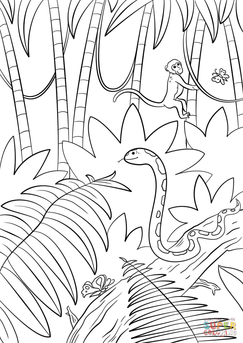 Jungle Coloring Pages  Jungle Scene coloring page