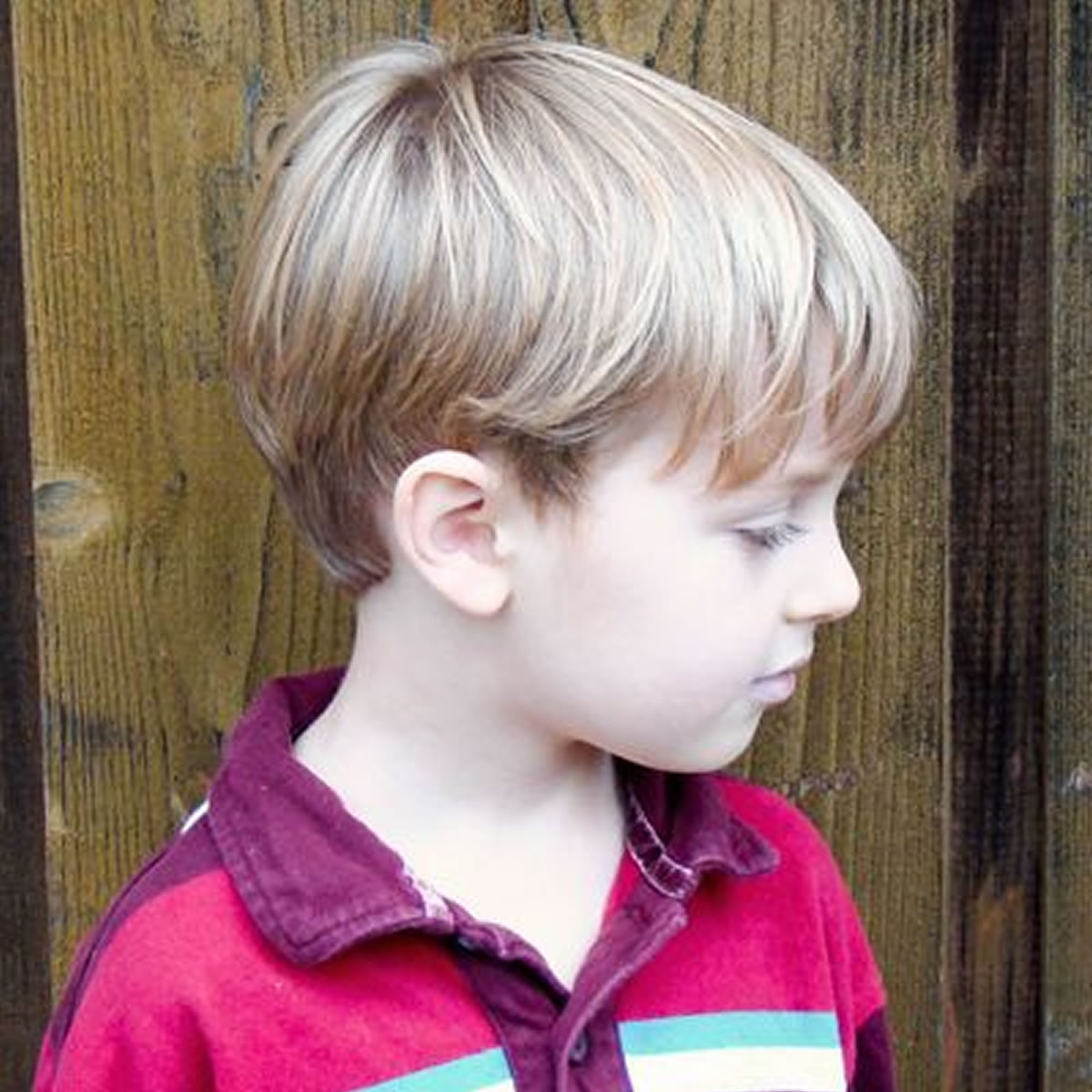Little Boys Haircuts 2019  Great Hairstyles and Haircuts ideas for Little Boys 2018