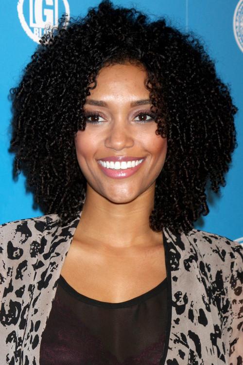 Medium Length African American Hairstyles  African American Natural Hairstyles For Medium Short