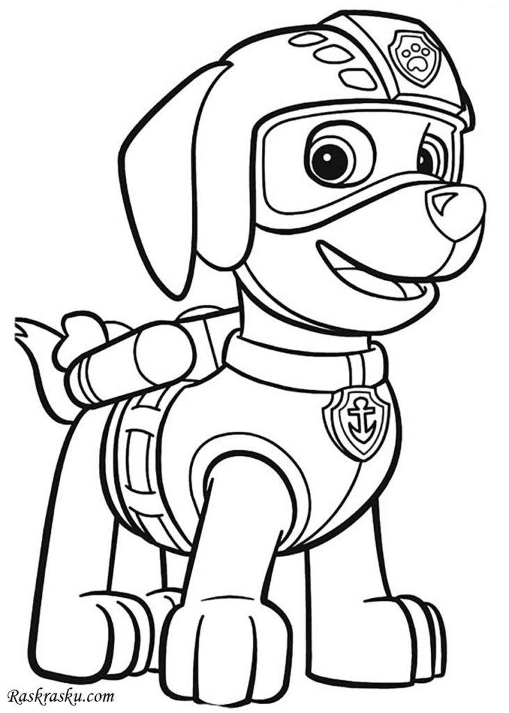Mighty Pups Coloring Pages  Dibujos para colorear de paw patrol zuma