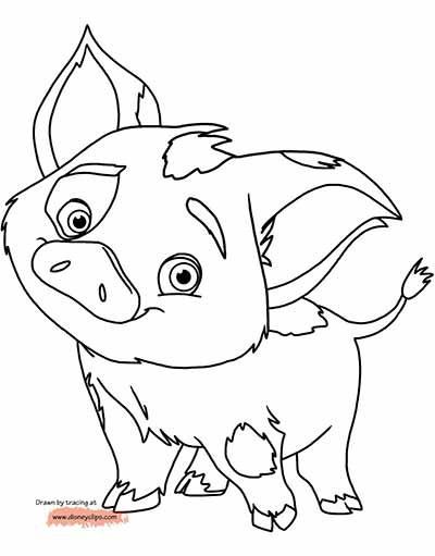 Moana Pua Coloring Pages  59 Moana Coloring Pages updated March 2018