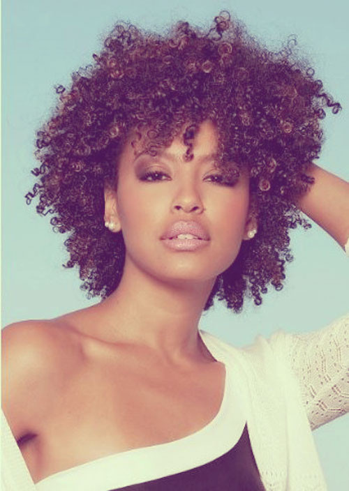 Natural Black Hair Hairstyles  Beautiful Short Hairstyles for Black Women