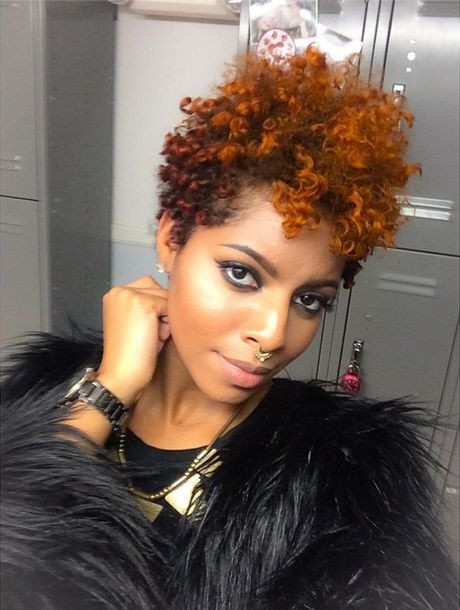 Natural Hairstyles With Color  101 Short Hairstyles For Black Women Natural Hairstyles