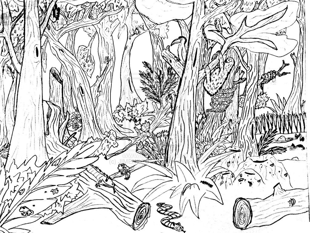 Nature Coloring Pages For Kids  Free Printable Nature Coloring Pages For Kids Best