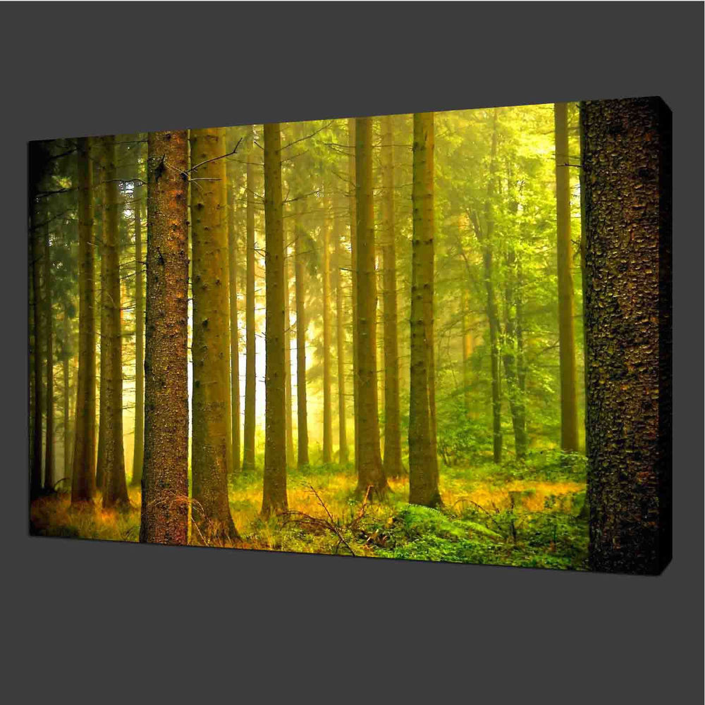 Best ideas about Nature Wall Art . Save or Pin Canvas Prints Wall Art Green Landscape Forest Nature Home Now.