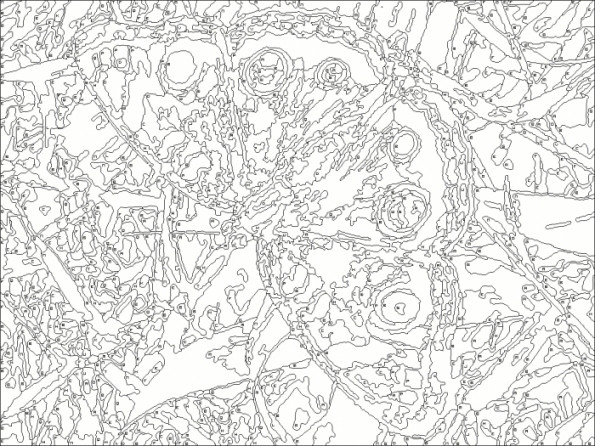 Nicole'S Free Coloring Pages  Nicole s Free Coloring Pages Colornumber Winter